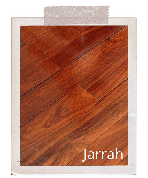 Timber Species Jarrah